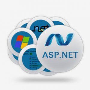 کتاب نکته های امنیتی در Asp.Net به فارسی