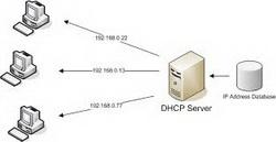 دانلود جزوه کامل سرویس های شبکه DNS و DHCP